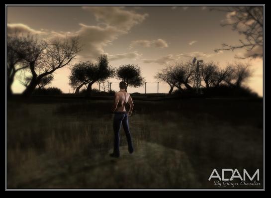 ADAM --06