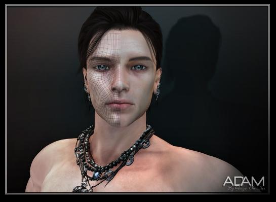 ADAM Mesh head ---10-1-16