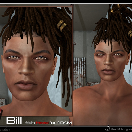 https://marketplace.secondlife.com/p/Adam-Dany-Skin-head/14936719