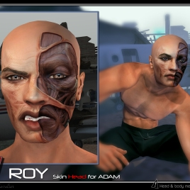 https://marketplace.secondlife.com/p/Adam-Roy-Skin-head/14936703