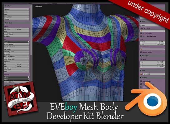 developer-KIT-EVEboy-body.jpg