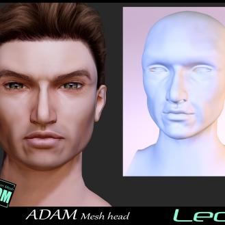 https://marketplace.secondlife.com/p/Adam-Mesh-Head2-Leo-BOM-Bento/18335322