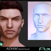 https://marketplace.secondlife.com/p/Adam-Mesh-Head2-Paul-BOM-Bento/18335326