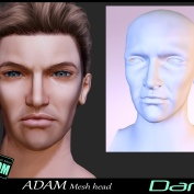 https://marketplace.secondlife.com/p/Adam-Mesh-Head2-Dan-BOM-Bento/18335321