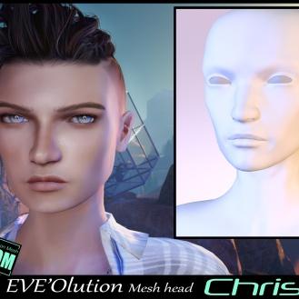 https://marketplace.secondlife.com/p/EVEOlution-Chris-Mesh-head-BOM-Bento/18344592
